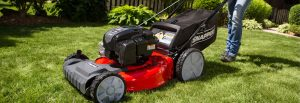 Push lawn mower