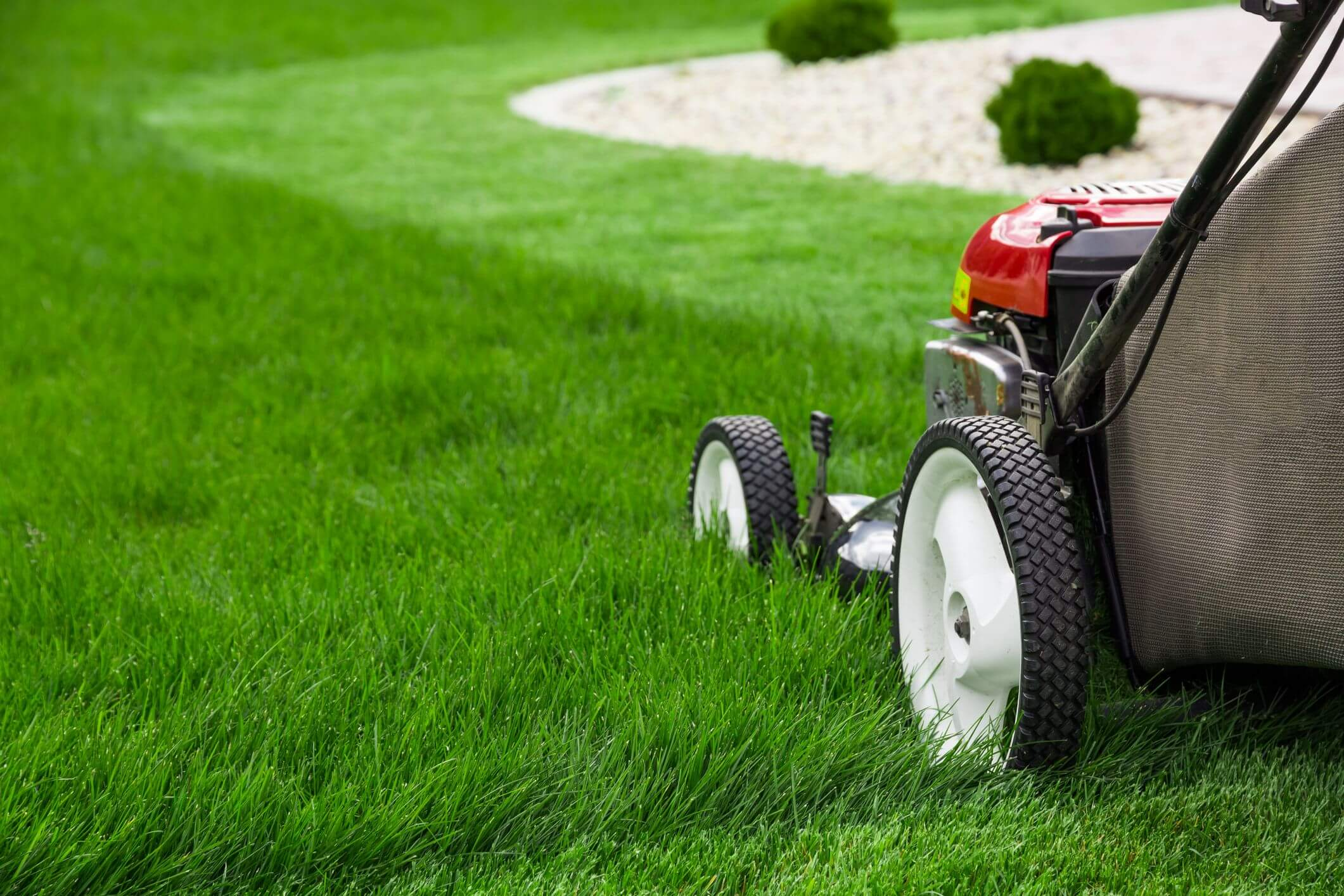 Reviews of Best Mowers for Hills