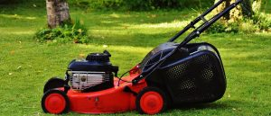 Choosing Lawn Mower
