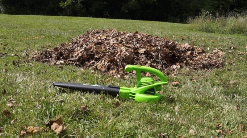 Top 5 Greenworks Leaf Blowers